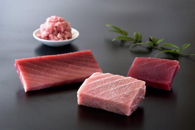 protein içeren yiyecek ton balığı