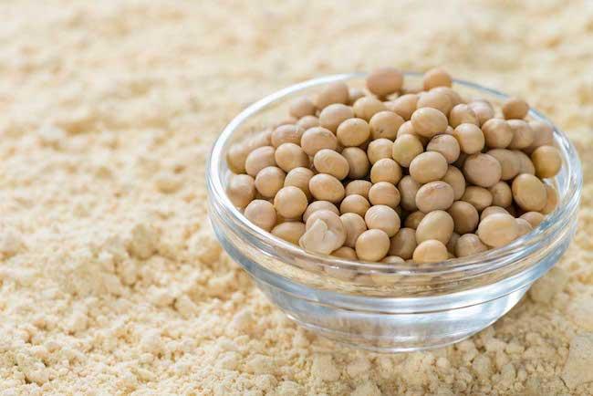 soya protein tozu faydaları